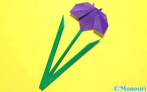 折り紙で作った菖蒲