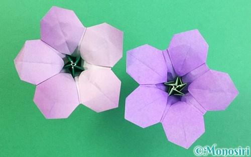 折り紙で作った立体的なリンドウ